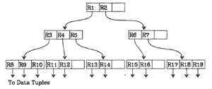 Figure 2a: structure of the R-tree [6]